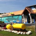 Free programs & discounts for Diving Museum